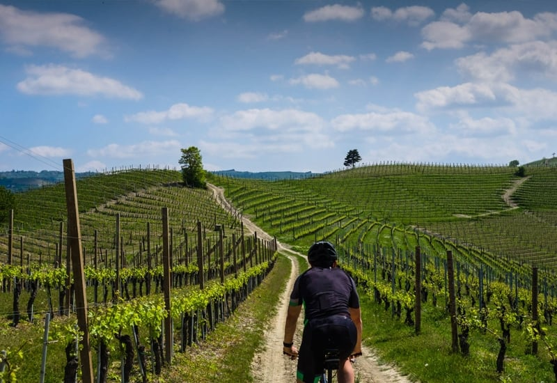 Italian Cookery Vacation Cycling